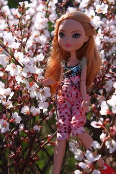Happy Spring! - from Dani and the rest of the DM Ever After High dolls