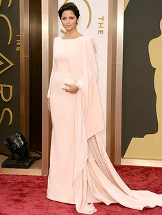 Camila Alves: 2014 Oscars, Matthew McConaughey's wife. Dress looked better on TV show.
