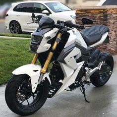 Honda Grom Grom Bike, Honda Ruckus, Best Motorbike, Motorcycle Gear, Honda Scooters, Pit Bike, Honda Motorcycles, Super Bikes, Street Bikes