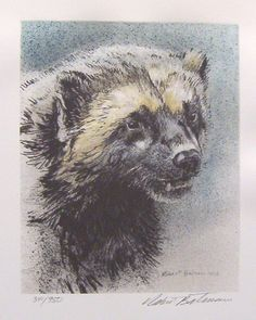 Robert Bateman gallery at Art Country Canada with paintings, canvas, giclee, limited edition prints and Wildlife Paintings, Wildlife Art, Animal Paintings, Wolverine Animal, Wolverine Art, Nature Artists, Canadian Artists, Batman, Artists