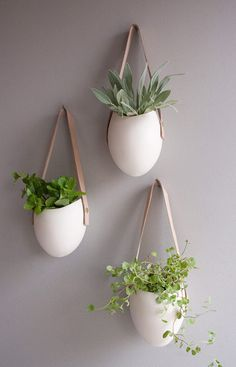 Hanging Planters by Farrah Sit #productdesign