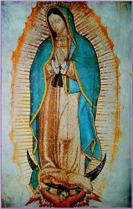 Our Lady of Guadalupe's Image at virginmotherofguadalupe.com