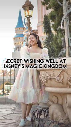 Secret Wishing Well at Disney's Magic Kingdom