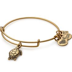 Alex and Ani Sea Turtle Charm Bangle - * NEW IN BOX * ($28 value)