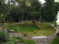 natural swimming pool . has the feel of a submerged ruin . Avalon Landscapes