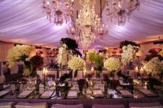 purple and chandeliers...wow!