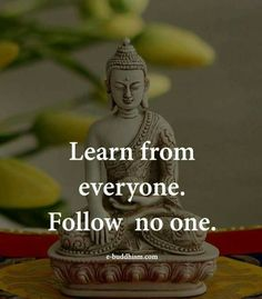 Learn from everyone. Follow no one. Inspirational Quotes and Words for motivation, inspiration and growth mindset