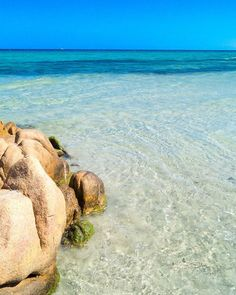 È vero... in Sardegna abbiamo proprio l'imbarazzo della scelta!!!Questi sono i colori del mare di Berchida  #berchida#siniscola #sardegna#sardinia#lanuovasardegna #focusardegna#sardegnaofficial #igersardegna#igersassari#sardegna_reporter #volgosardegna#sardiniamylove #sardegnareflex#sardinia_exp#beach#sardegnageographic #ig_skyline #sardiniain #beautiful#italian_trips#landscape#thehub_sardegna#italian_places#beautiful#paradise#italy