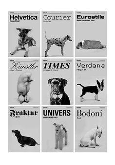 si los perros fueran tipografias