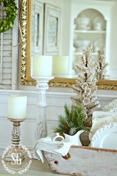 BON NOEL- HOW TO CREATE FRENCH CHRISTMAS DECOR-small tree in antique caddy-stonegableblog.com