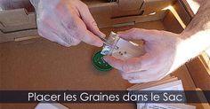 Petit sac en plastique et papier absorbant pour faire la stratificaton des semences. Instructions:  http://www.jardinage-quebec.com/guide/stratification-des-graines/stratifier-semences-3.html