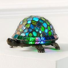 Types of Tortoise for Pets – Find Your Favorite T Turtle, Turtle Pond, Mosaic Art, Mosaics, Sea Turtle Decor, Cute Tortoise, Turtle Homes, Turtle Crafts, Turtle Figurines