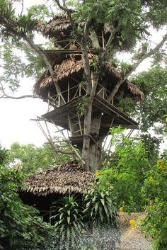Treehouse at La Casa Fitzcarraldo in #Iquitos, #Peru.