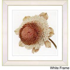 <li>State: Massachusetts</li> <li>Artist: Zhee Singer</li> <li>Title: Vintage Botanical No 20c - White</li> <li>Product type: Framed Giclee fine art print</li>