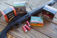 Mad Gun Science: Is Birdshot Effective at Indoor Distances?, We're testing a variety of birdshot sizes to see just how effective the are at indoor distances.