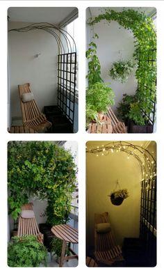 Kanarian kranssi,  Balcony, four seasons