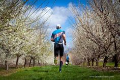 Road Race....running through apple orchards at Smolak Farms