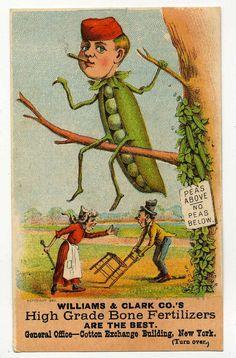 Victorian Trade Card  Fertilizer Advertising by VintageVendor