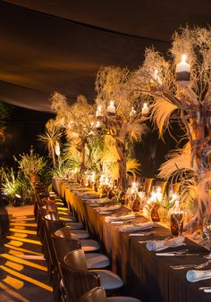 Henry Bonas is an acclaimed wedding & party planner with a reputation for creating breathtaking bespoke events from the Cotswolds to London. Africa Theme Party, African Party Theme, African Wedding Theme, Safari Theme Party, Party Themes, Jungle Party, Egyptian Themed Party, Luau, Egyptian Wedding