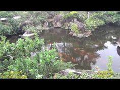 ▶ Америка. Morikami museum and Japanese Gardens Florida 720HD - YouTube