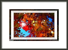Italian-autumno Framed Print By Holley Jacobs