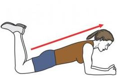 exercices abdos débutant