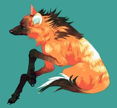 Maned wolf More