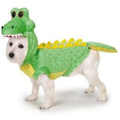 A Crocodile Costume