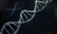 Dna helix for concept of digital genetic engineering Premium Photo Science Background, Technology Background, Background Banner, Linkedin Background Photo, Linkedin Cover Photo, Line Diagram, Circuit Diagram, Biochemical Engineering, Systems Biology