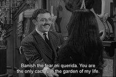 <3 Gomez and Morticia.