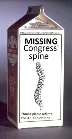 MISSING: Congress's spine
