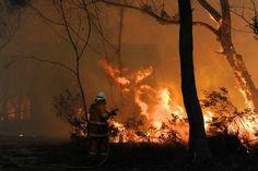 【スライドショー】オーストラリアの山火事、悪化の恐れも - WSJ.com