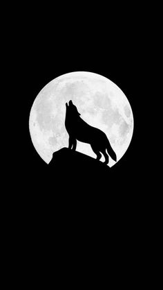 Howling wolf iphone wallpaper iphone wallpapers in 2019 милы Iphone Wallpaper Wolf, Black Wallpaper Iphone Dark, Minimal Wallpaper, Cute Wallpaper Backgrounds, Galaxy Wallpaper, Cellphone Wallpaper, Cute Wallpapers, Iphone Wallpapers, Trendy Wallpaper
