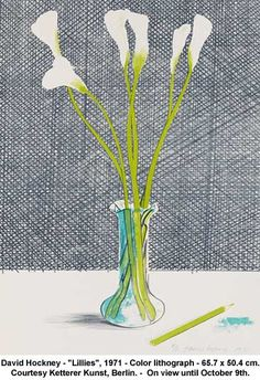 "David Hockney - ""Lillies"", 1971 by artimageslibrary, via Flickr"