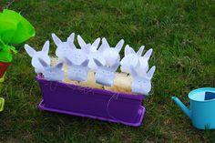 La casa del coniglio pasquale 2016 - Caccia alle uova