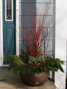 Winter container garden with Dogwood, Juniper, Rose hips, and pine boughs. garden-stories.com