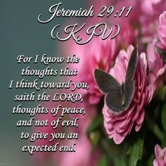 JEREMIAH  29:11 Love this verse. A precious promise to claim