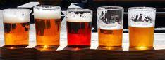 Become a brew master with these beer making essentials Tournée Des Bars, Manneken Pis, Popular Beers, Beer Week, Gluten Free Beer, Florida Food, Beer Brands, Pub Crawl, Cabbage Rolls