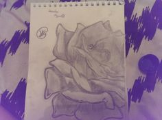 #roses#keytobeauty