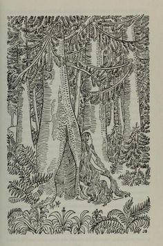 The complete Grimm's fairy tales , 1972  Illustrations by Josef Scharl  tumblr_mdazwvMrTk1qhtuebo1_500.jpg (398×602)