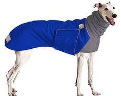 Resultado de imagen para diy greyhound clothes