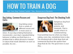 There are many different training methods you can use on training your new dog. How to Train a Dog depends on how willing you are to put in the time and effort.   How to Train a New Dog? It's all about patience and training and retraining.