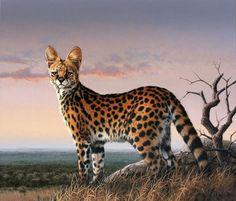 """""""Serval Sunset"""", Fuz Caforio on ArtStation at https://www.artstation.com/artwork/3mnKo"""