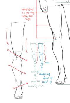 Anatomy Tutorial Back Drawings Leg Reference, Body Reference Drawing, Anatomy Reference, Art Reference Poses, Anatomy Sketches, Anatomy Drawing, Anatomy Art, Human Anatomy, Girl Anatomy