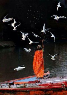 You are what you seek . ~Rumi ..* هر چیز که در جستن آنی ،آنی