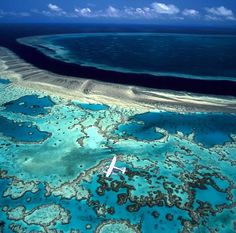 The Great Barrier Reef!