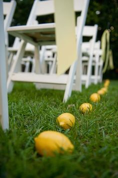 Lemons are a great, inexpensive way to sunny up your ceremony décor! Crash Entertainment, West Hollywood wedding DJ.