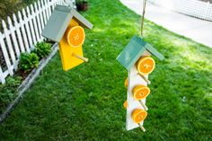 @kennethwingard's DIY Fruit Bird Feeder looks great in any yard! For more great DIYs tune in to Home & Family weekdays at 10a/9c on Hallmark Channel!