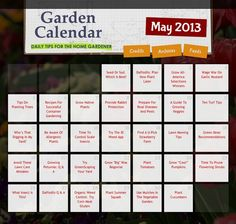 DAILY gardening tips for the month of May! Great gardening resource -- just click the day for helpful tips on keeping up with your lawn garden this spring. Rose Diseases, Lawn And Garden, Garden Farm, Family Crafts, Farm Gardens, Landscaping Tips, Diet Tips, May, Trees To Plant