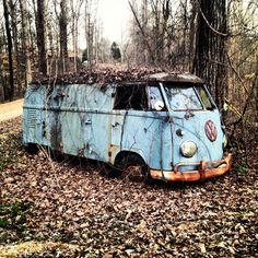 Love this photo of the vintage vw van on my road. Took this on my first spring walk. #mymaxxexpression